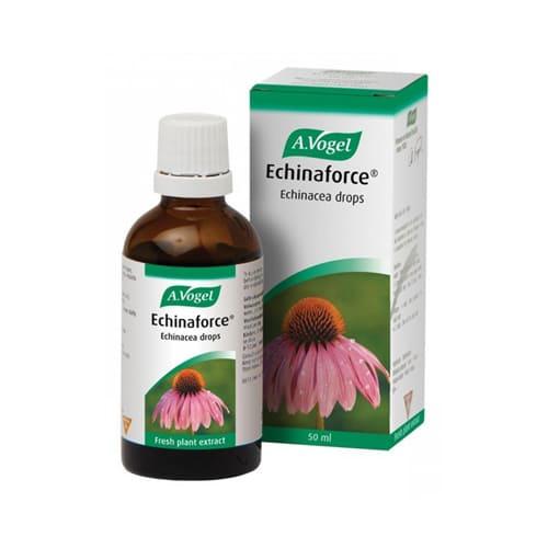 A Vogel Echinaforce Echinacea Drops 50ml
